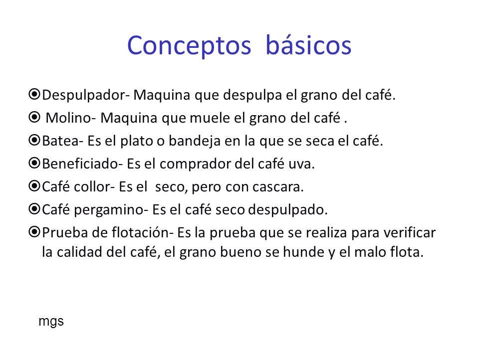 Conceptos básicos Despulpador- Maquina que despulpa el grano del café.