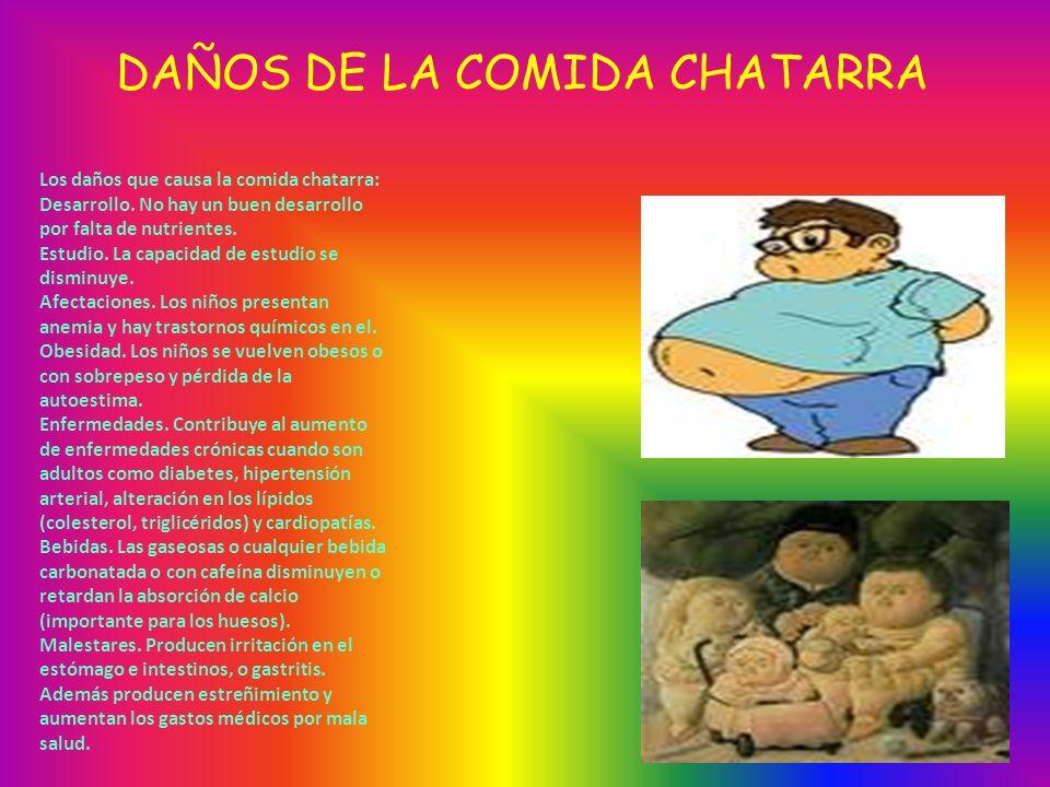 DAÑOS DE LA COMIDA CHATARRA