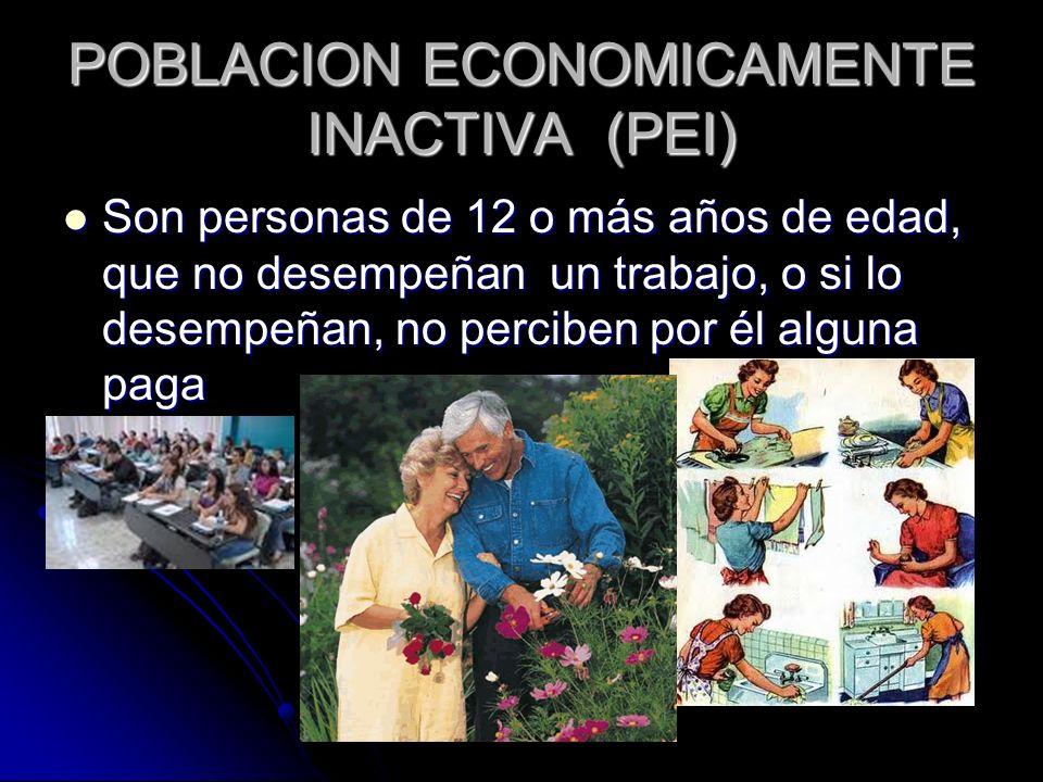 POBLACION ECONOMICAMENTE INACTIVA (PEI)