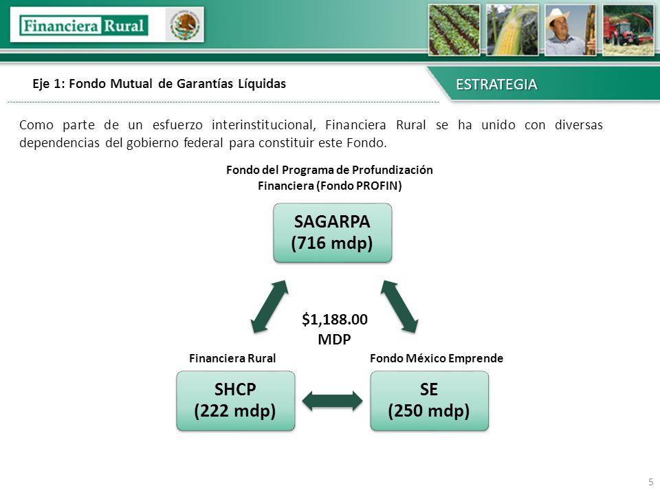 Eje 1: Fondo Mutual de Garantías Líquidas