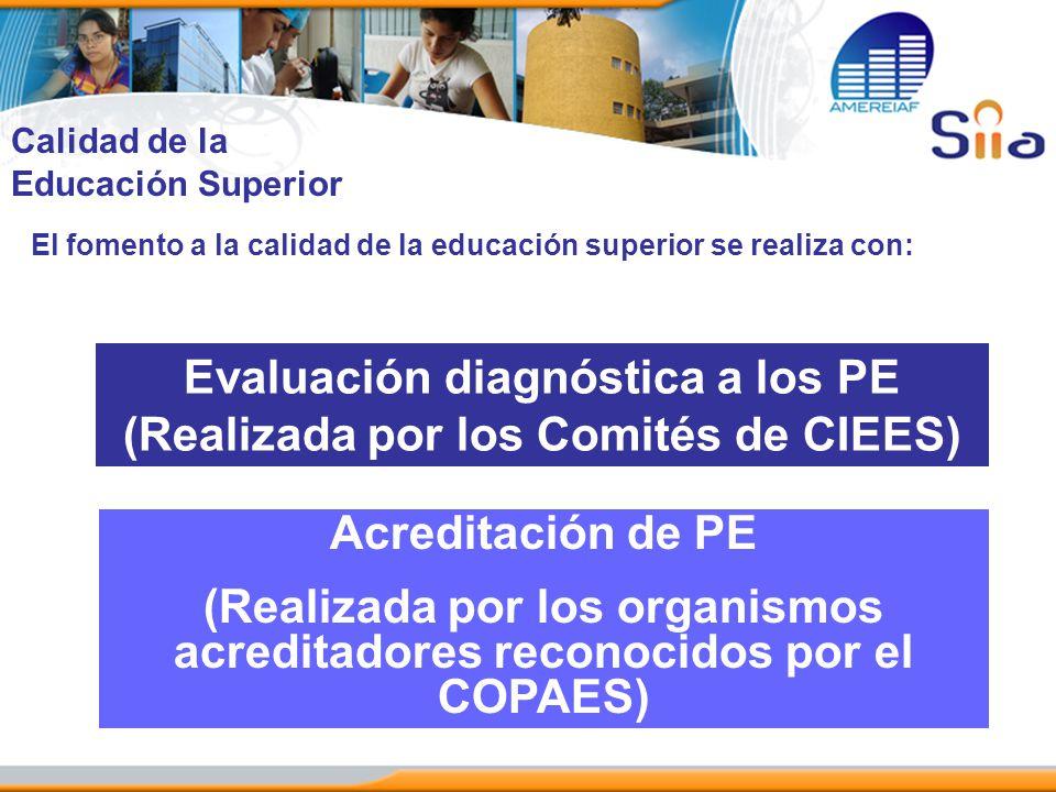 Evaluación diagnóstica a los PE (Realizada por los Comités de CIEES)