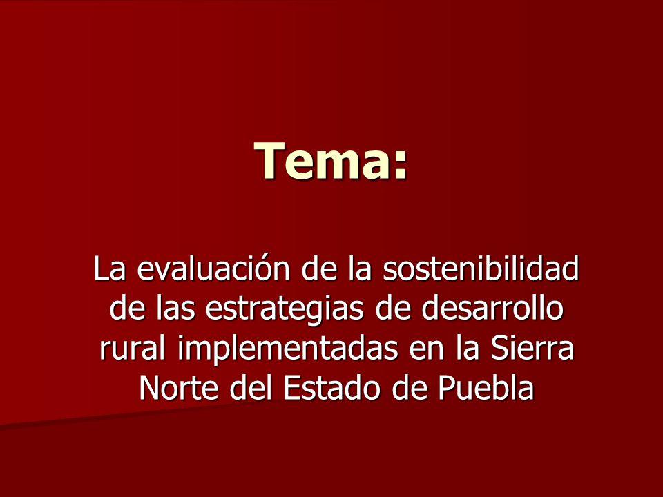 Tema: La evaluación de la sostenibilidad de las estrategias de desarrollo rural implementadas en la Sierra Norte del Estado de Puebla.