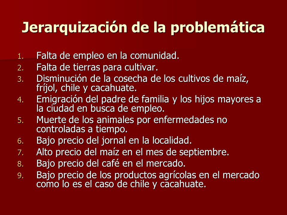 Jerarquización de la problemática