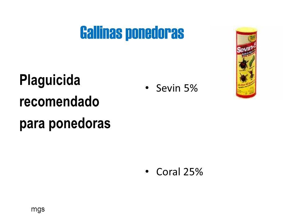 Gallinas ponedoras Plaguicida recomendado para ponedoras Sevin 5%