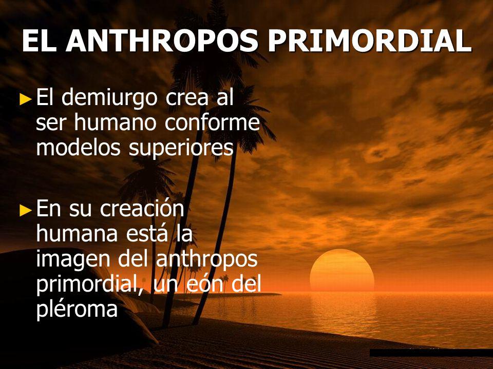 EL ANTHROPOS PRIMORDIAL