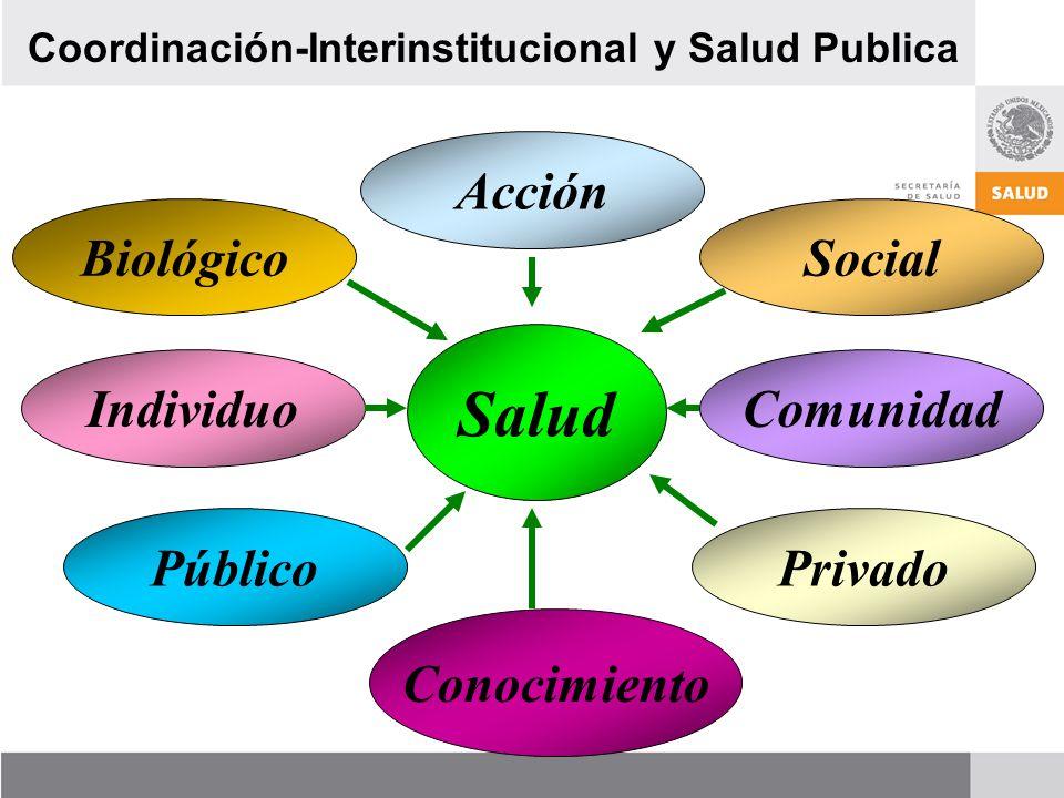 Salud Acción Biológico Social Individuo Comunidad Público Privado