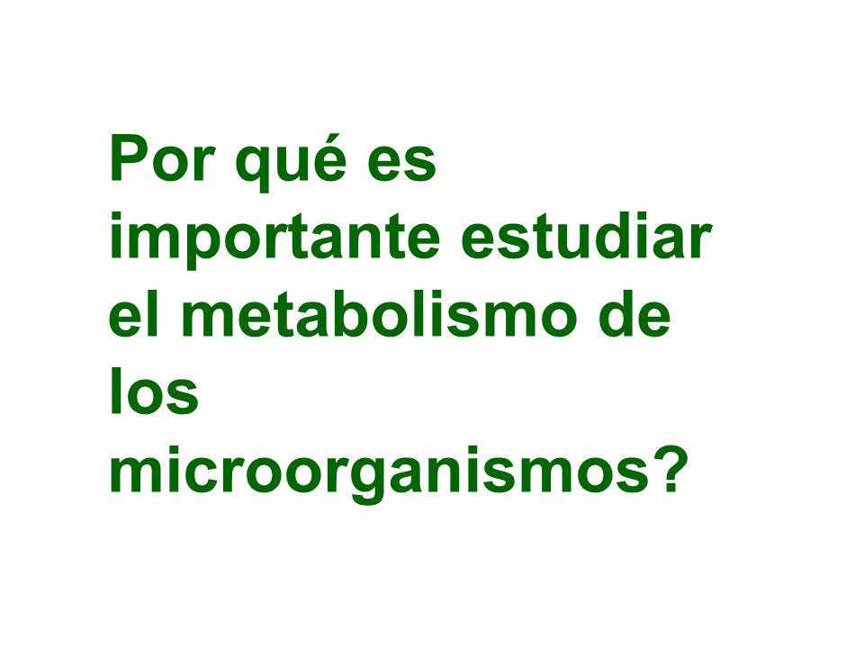 Por qué es importante estudiar el metabolismo de los microorganismos