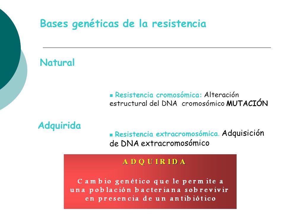 Bases genéticas de la resistencia