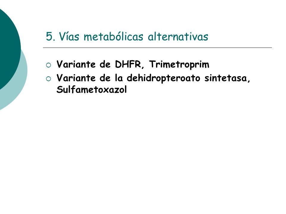 5. Vías metabólicas alternativas