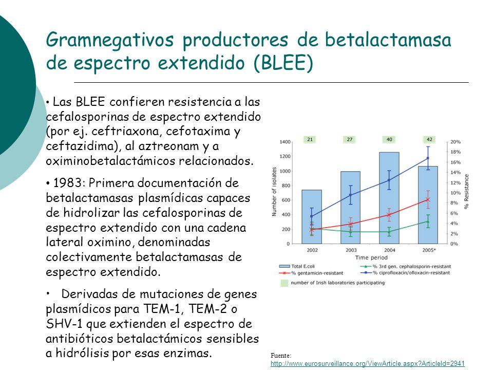 Gramnegativos productores de betalactamasa de espectro extendido (BLEE)