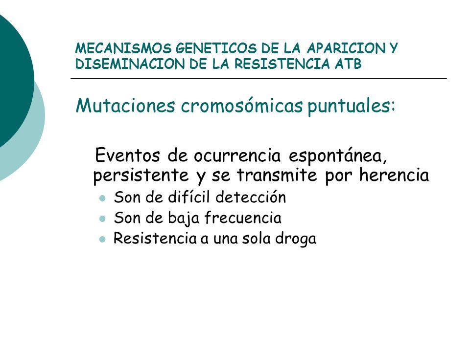 Mutaciones cromosómicas puntuales: