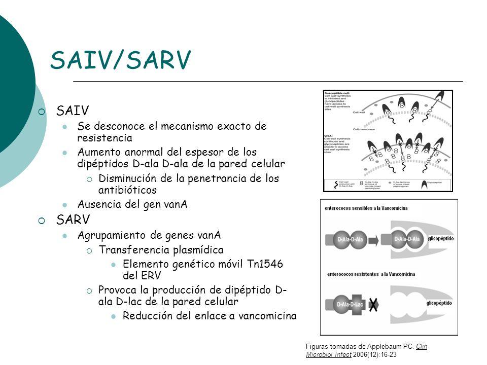 SAIV/SARV SAIV SARV Se desconoce el mecanismo exacto de resistencia