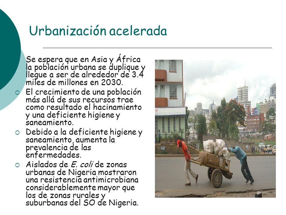 Urbanización acelerada