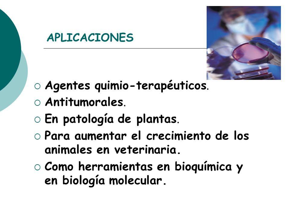 Agentes quimio-terapéuticos. Antitumorales. En patología de plantas.
