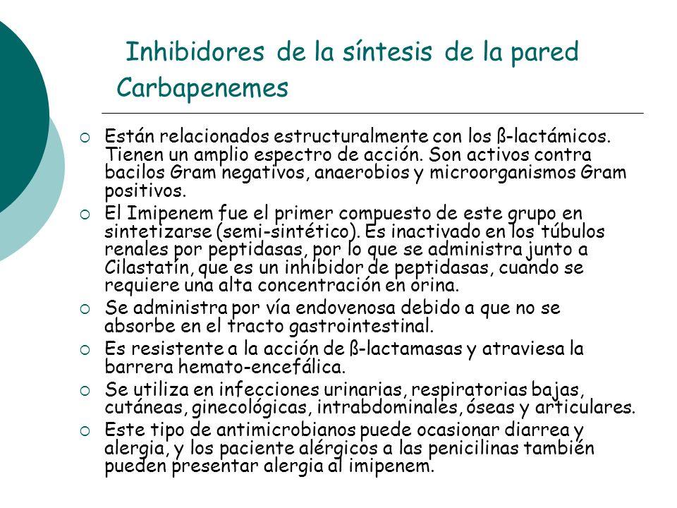 Inhibidores de la síntesis de la pared Carbapenemes