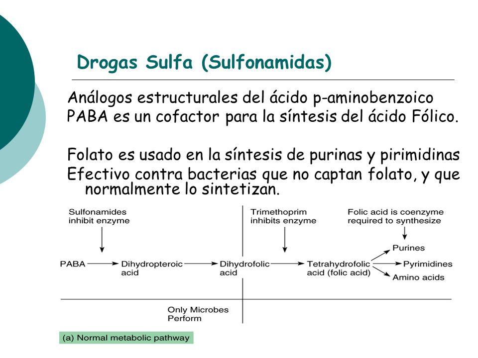 Drogas Sulfa (Sulfonamidas)