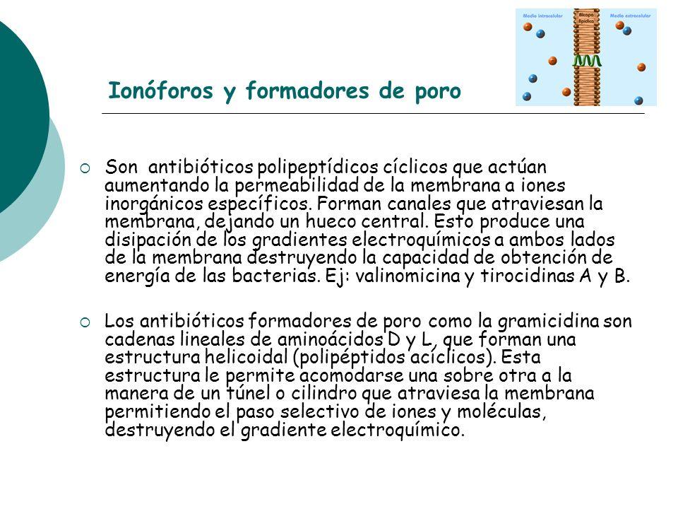 Ionóforos y formadores de poro