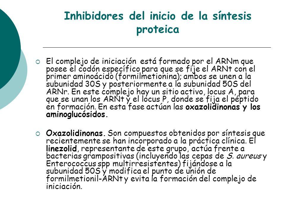 Inhibidores del inicio de la síntesis proteica