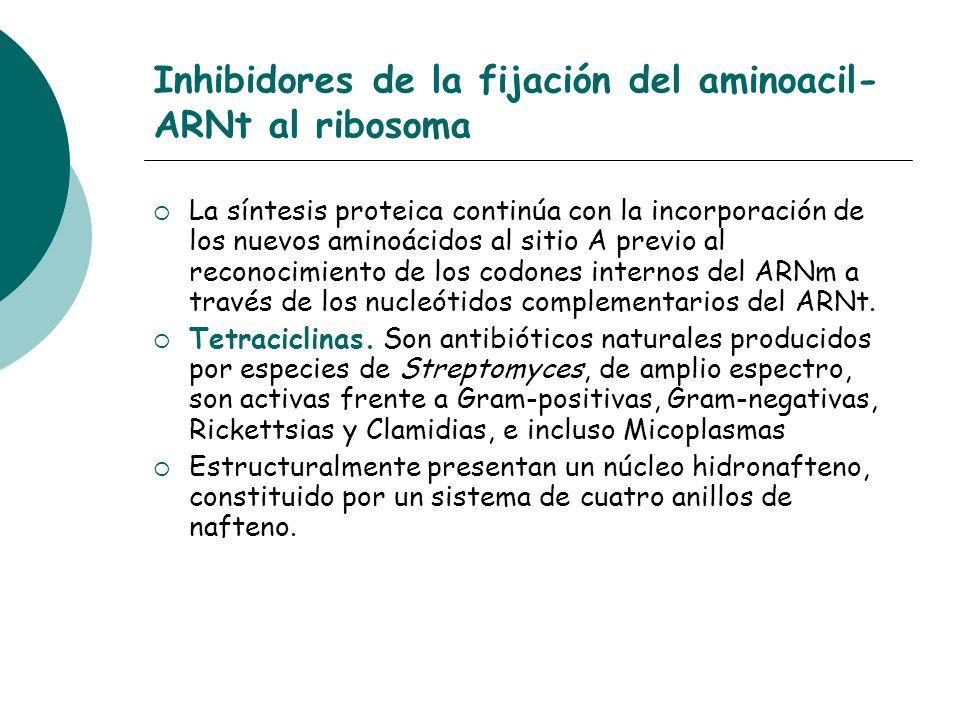 Inhibidores de la fijación del aminoacil-ARNt al ribosoma