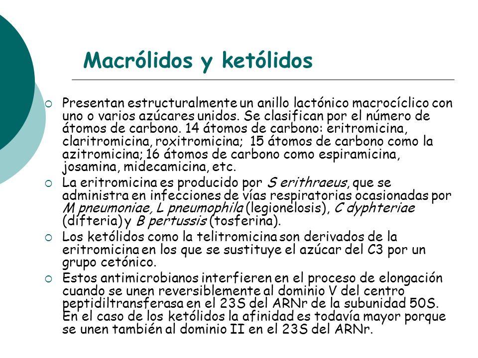Macrólidos y ketólidos