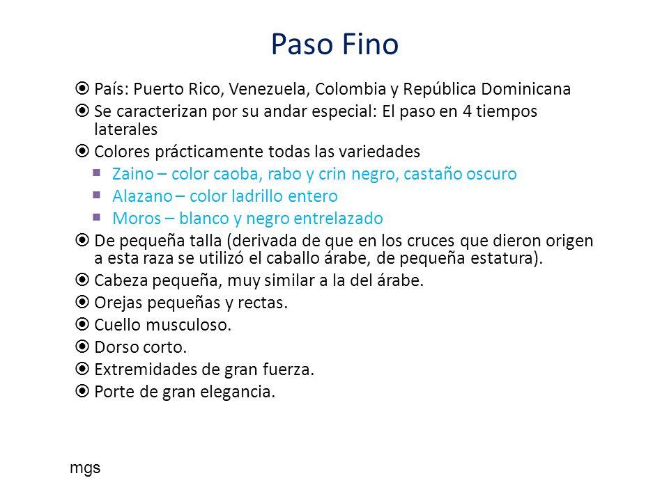 Paso Fino País: Puerto Rico, Venezuela, Colombia y República Dominicana. Se caracterizan por su andar especial: El paso en 4 tiempos laterales.