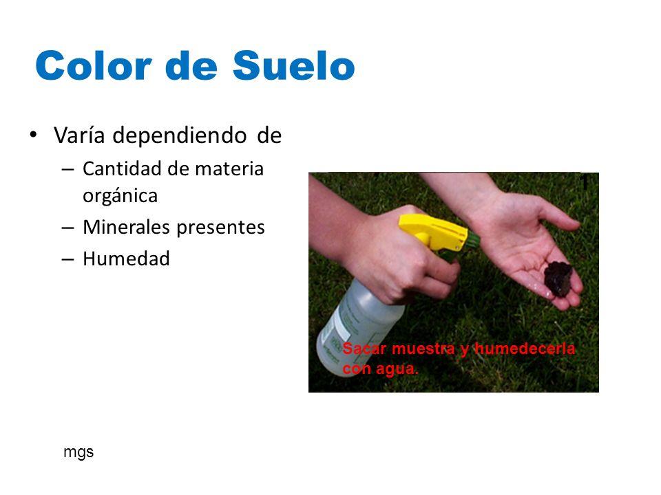 Color de Suelo Varía dependiendo de Cantidad de materia orgánica
