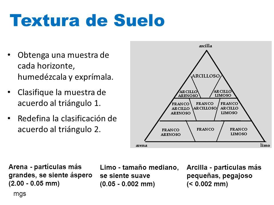 Textura de Suelo Obtenga una muestra de cada horizonte, humedézcala y exprímala. Clasifique la muestra de acuerdo al triángulo 1.