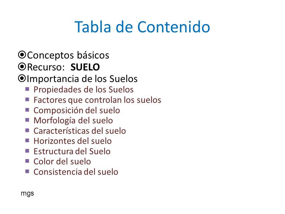 Tabla de Contenido Conceptos básicos Recurso: SUELO