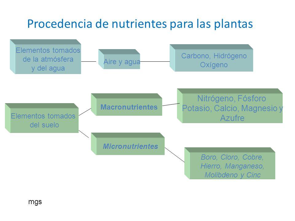 Procedencia de nutrientes para las plantas