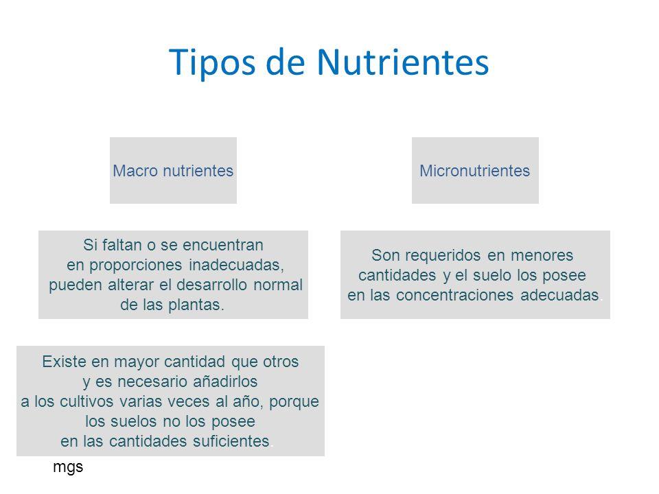 Tipos de Nutrientes Macro nutrientes Micronutrientes