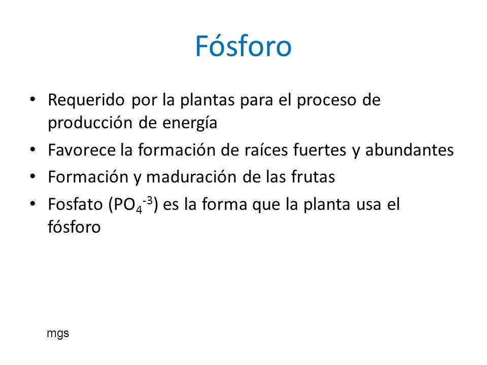 Fósforo Requerido por la plantas para el proceso de producción de energía. Favorece la formación de raíces fuertes y abundantes.