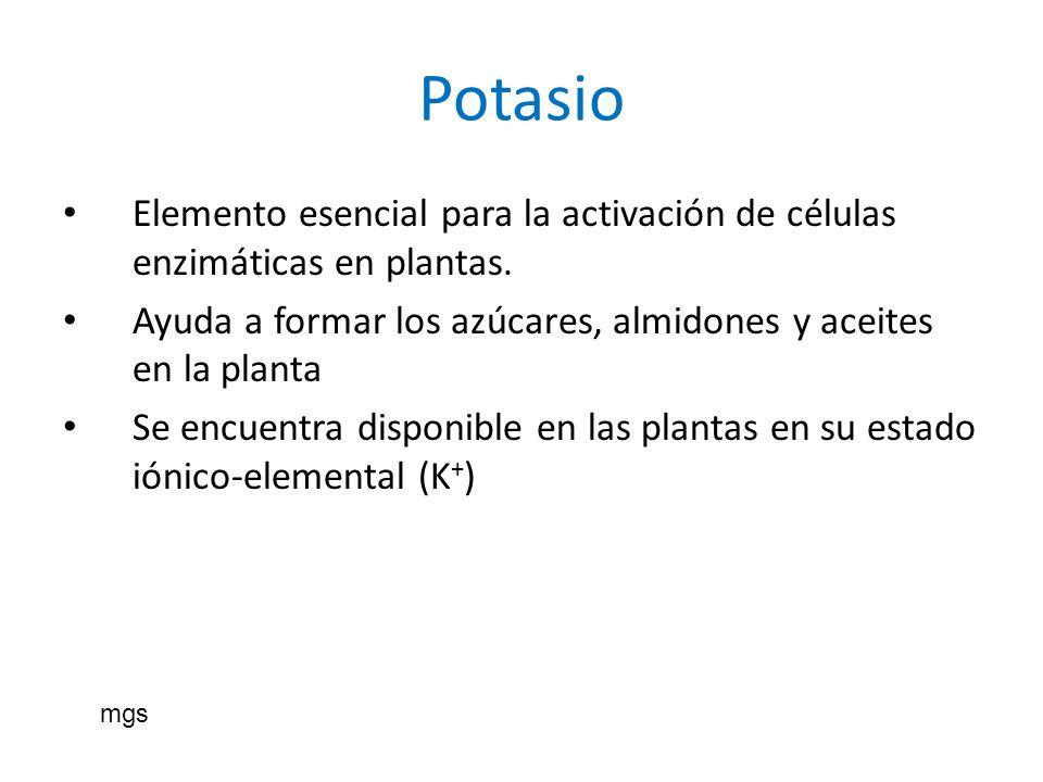 Potasio Elemento esencial para la activación de células enzimáticas en plantas. Ayuda a formar los azúcares, almidones y aceites en la planta.
