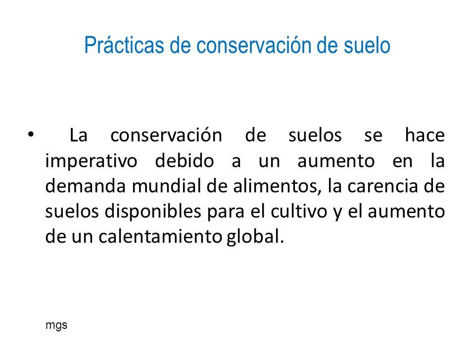 Prácticas de conservación de suelo