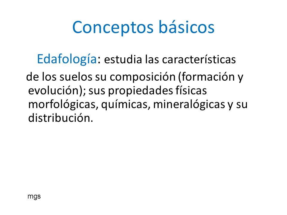 Conceptos básicos Edafología: estudia las características