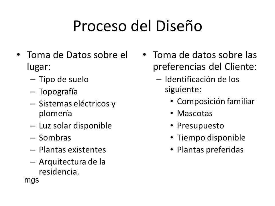 Proceso del Diseño Toma de Datos sobre el lugar: