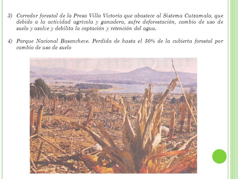Corredor forestal de la Presa Villa Victoria que abastece al Sistema Cutzamala, que debido a la actividad agrícola y ganadera, sufre deforestación, cambio de uso de suelo y azolve y debilita la captación y retención del agua.