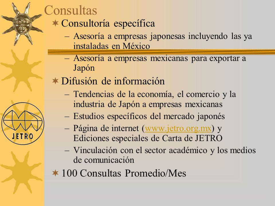 Consultas Consultoría específica Difusión de información