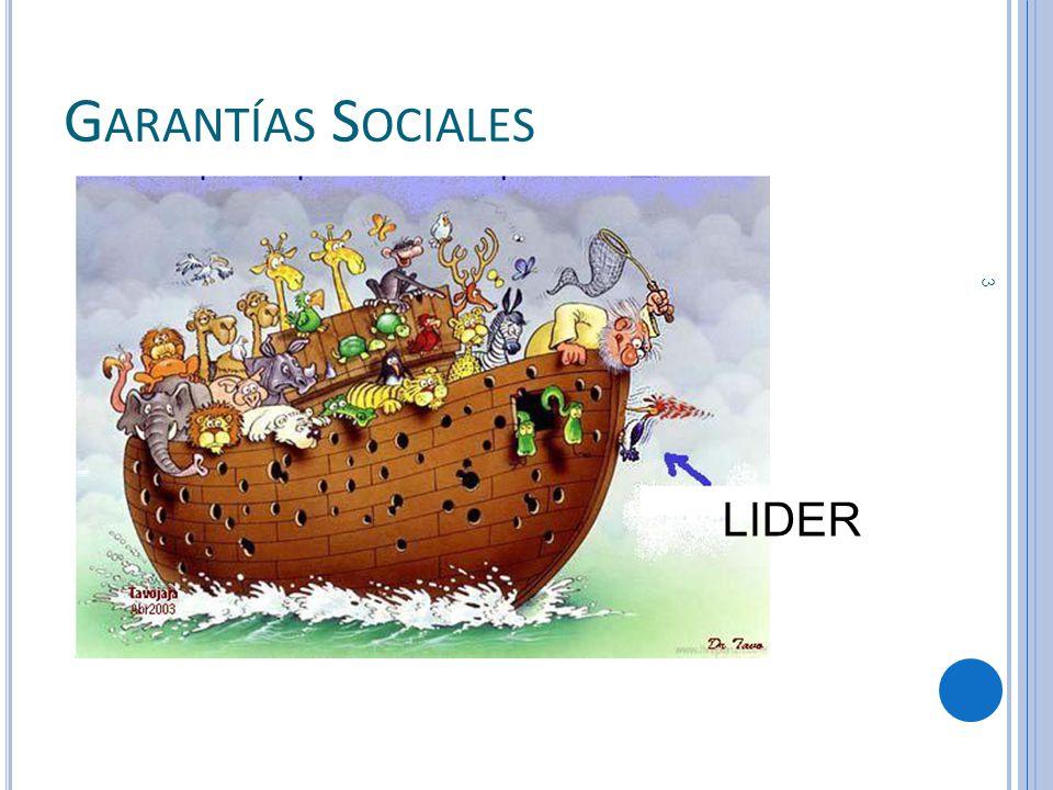 Garantías Sociales LIDER