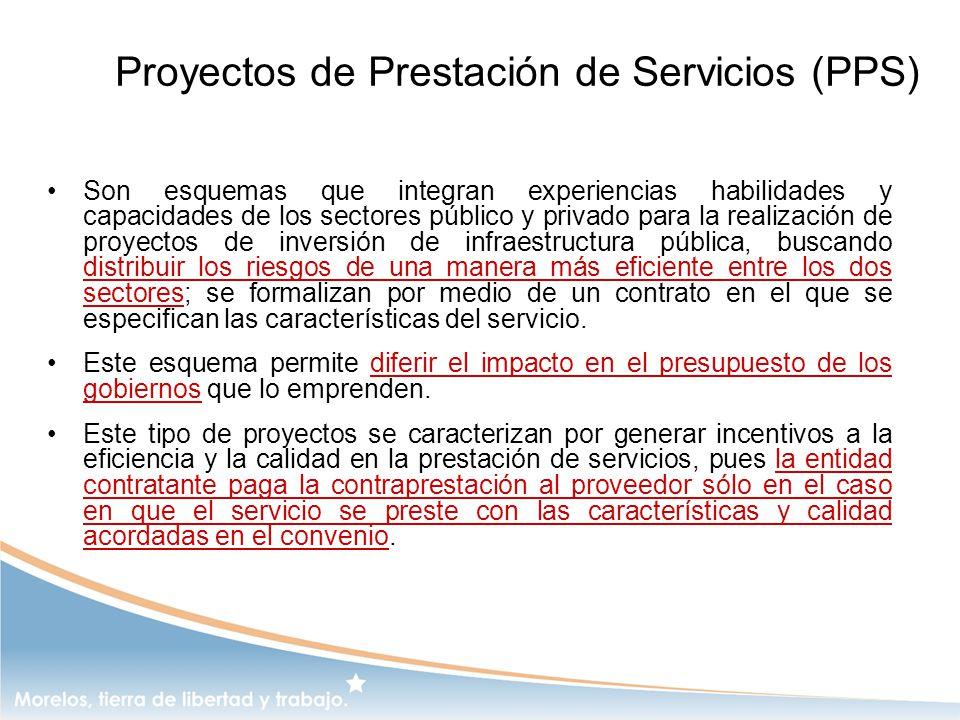 Proyectos de Prestación de Servicios (PPS)