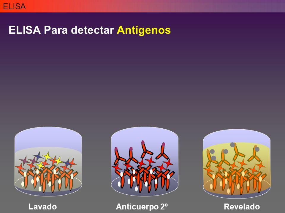 ELISA Para detectar Antígenos