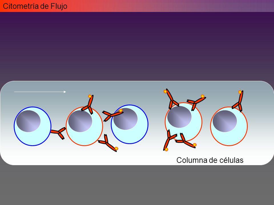 Citometría de Flujo Columna de células