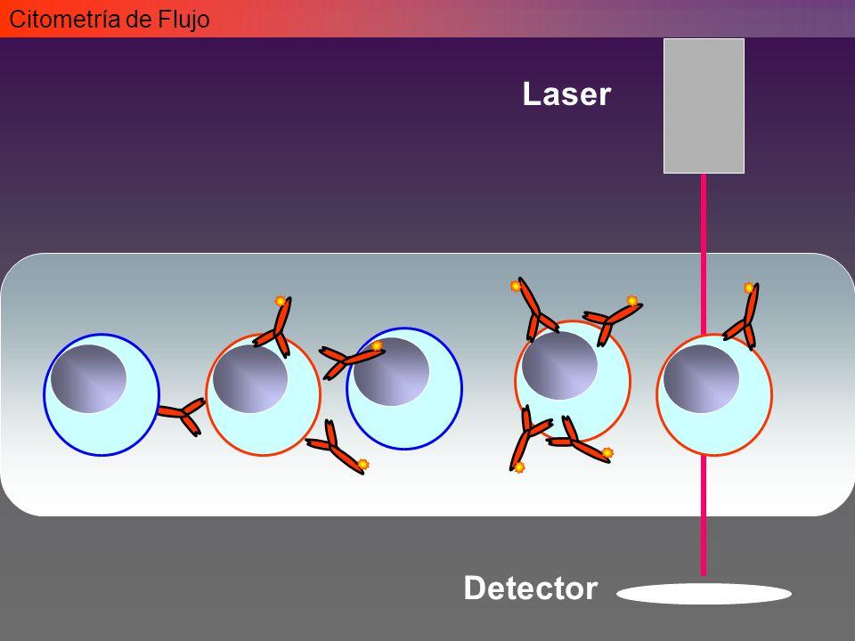 Citometría de Flujo Laser Detector