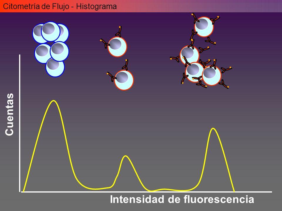 Intensidad de fluorescencia