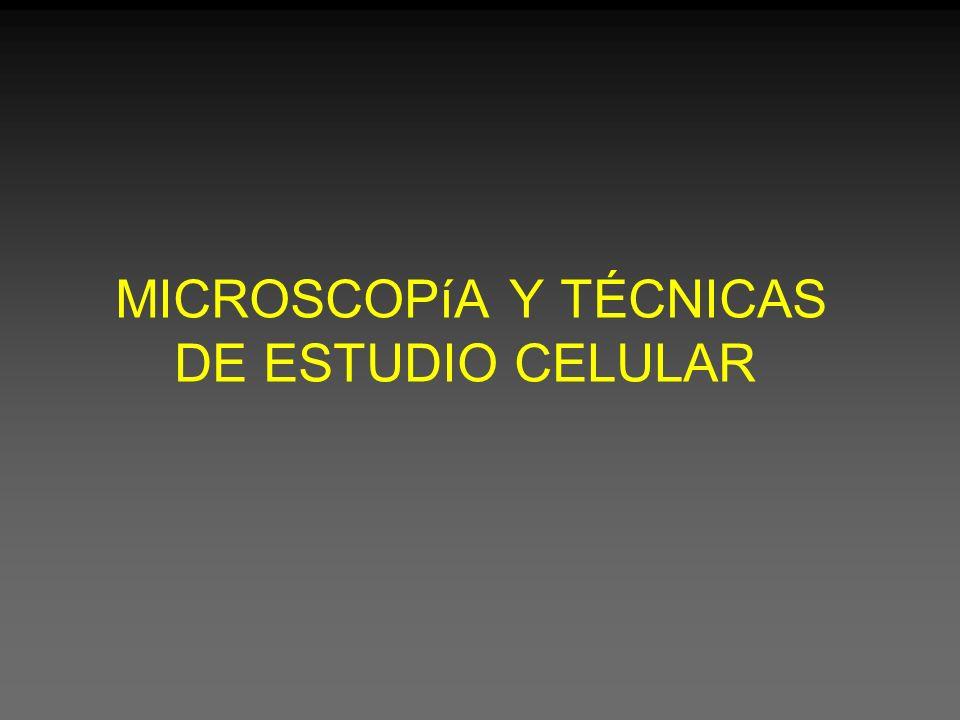 MICROSCOPíA Y TÉCNICAS DE ESTUDIO CELULAR