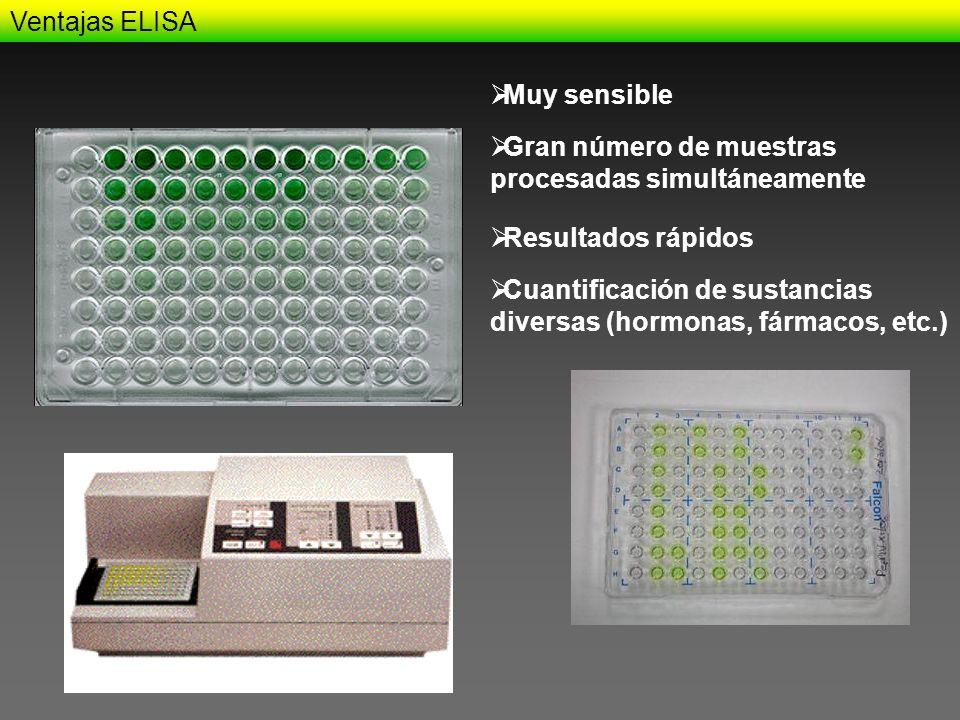 Ventajas ELISA Muy sensible. Gran número de muestras procesadas simultáneamente. Resultados rápidos.