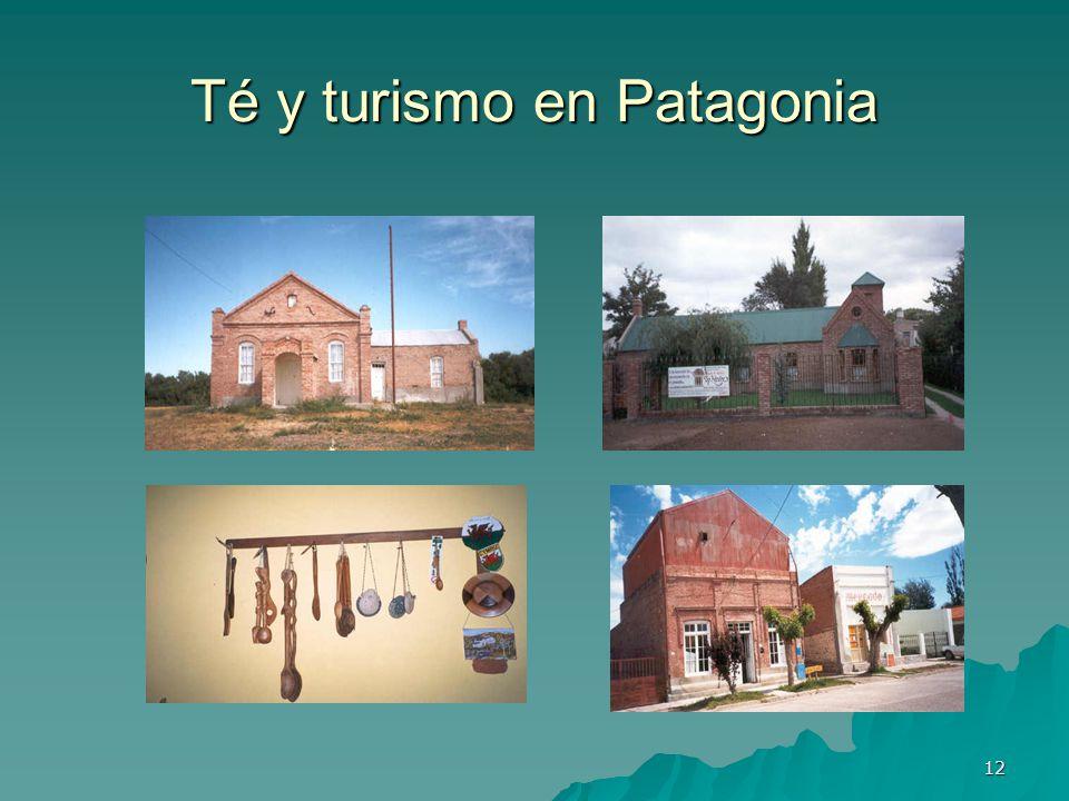 Té y turismo en Patagonia