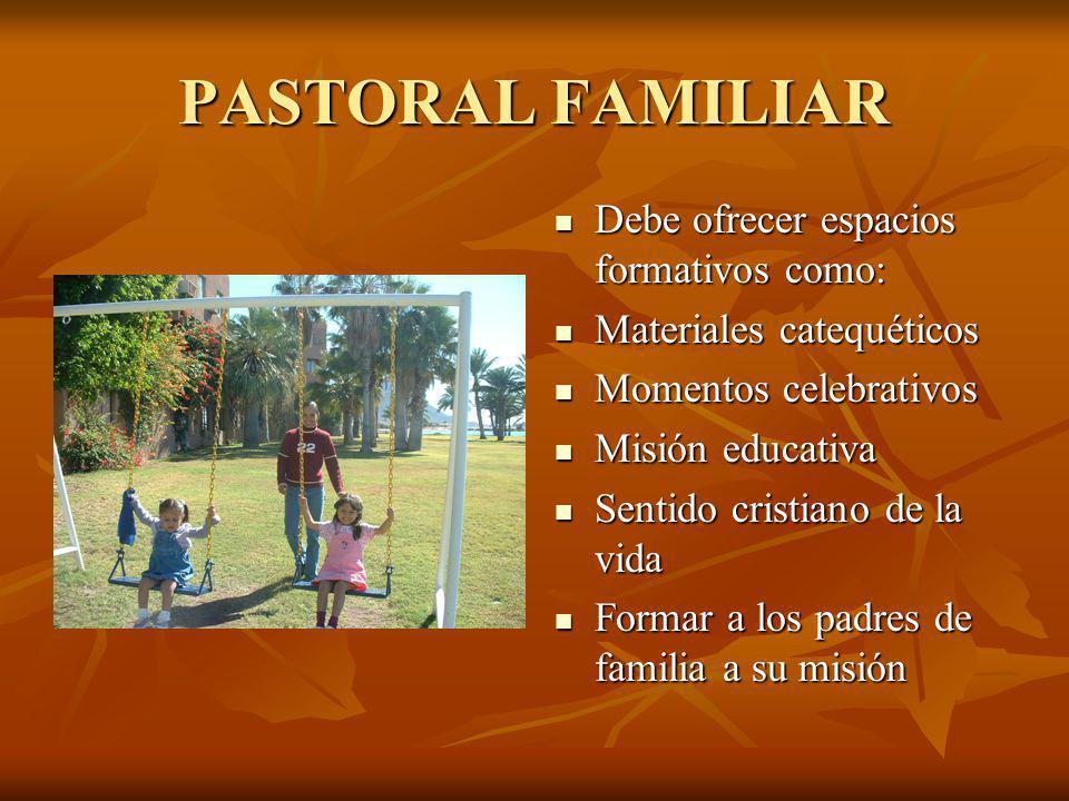PASTORAL FAMILIAR Debe ofrecer espacios formativos como: