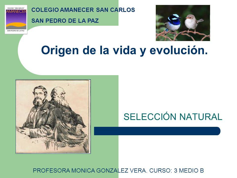 Origen de la vida y evolución.