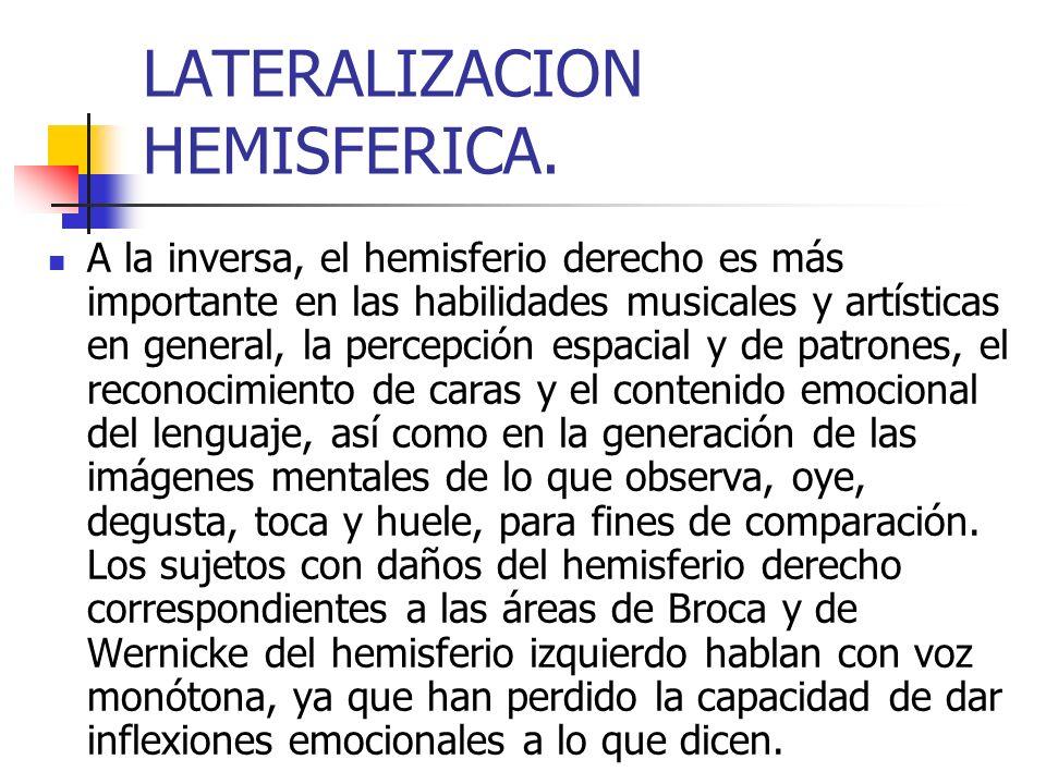 LATERALIZACION HEMISFERICA.