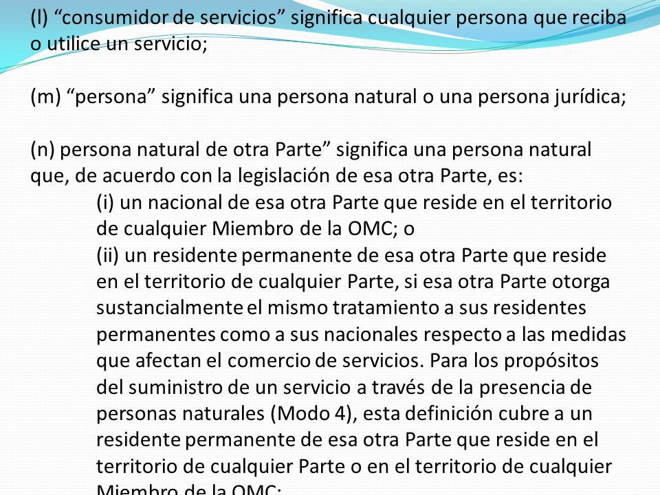 (l) consumidor de servicios significa cualquier persona que reciba o utilice un servicio;